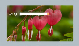 Bing.com screenshot